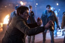 Maze Runner: The Scorch Trials photo 5 of 14