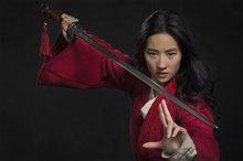 Mulan (v.f.) Photo 1