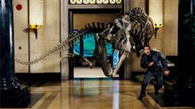 Night at the Museum Photo 2