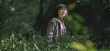 Okja (Netflix) photo 2 of 5