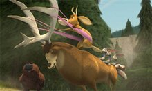 Open Season Photo 21