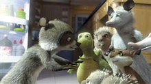 Over the Hedge Photo 13