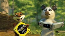 Over the Hedge Photo 15