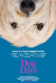 Par amour des chiens Photo 16