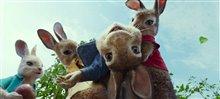 Peter Rabbit photo 2 of 2