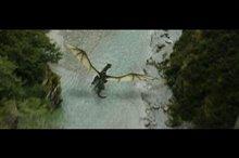 Pete's Dragon Photo 27