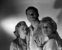 Psycho (1960) Photo 4 - Large