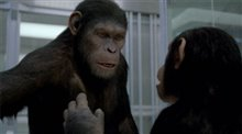 Rise of the Planet of the Apes Photo 6