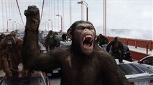Rise of the Planet of the Apes Photo 10