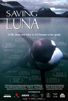 Saving Luna Poster Large