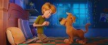 Scooby! Photo 10