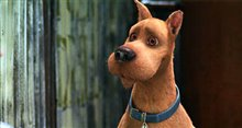 Scooby-Doo 2: Monsters Unleashed Photo 4
