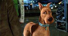 Scooby-Doo 2: Monsters Unleashed Photo 16