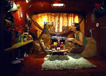 Scooby-Doo Photo 11