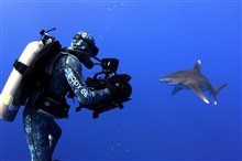 Sharkwater Extinction - Le film Photo 5