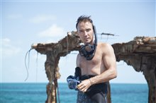 Sharkwater Extinction - Le film Photo 8