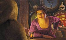 Shrek 2 photo 10 of 21