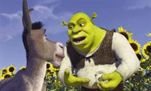 Shrek Photo 18
