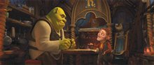 Shrek Forever After photo 3 of 24