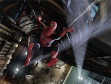 Spider-Man 3 Poster Large