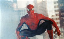 Spider-Man Photo 7