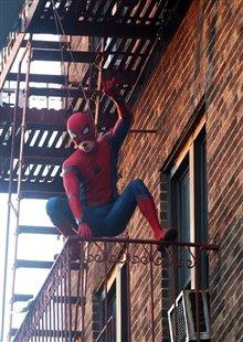Spider-Man : Les retrouvailles Photo 21