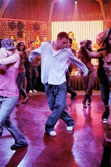 Step Up Photo 26