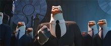 Storks Photo 29