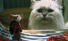 Stuart Little Photo 4