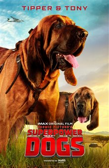 Superpower Dogs Photo 3