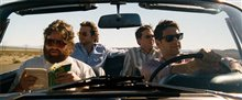 The Hangover Photo 23