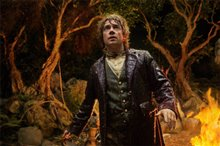 The Hobbit: An Unexpected Journey photo 17 of 116