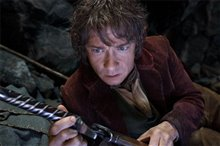 The Hobbit: An Unexpected Journey Photo 23