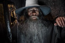 The Hobbit: The Desolation of Smaug - An IMAX 3D Experience photo 19 of 71