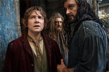 The Hobbit: The Desolation of Smaug - An IMAX 3D Experience photo 27 of 71