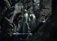 The Hobbit: The Desolation of Smaug - An IMAX 3D Experience photo 37 of 71