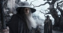 The Hobbit: The Desolation of Smaug Photo 38