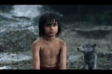 The Jungle Book Photo 14