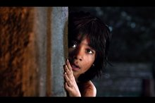 The Jungle Book Photo 18