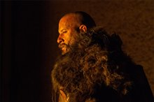The Last Witch Hunter photo 2 of 21 Poster
