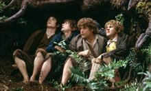 The Lord of the Rings: The Fellowship Of The Ring Photo 12