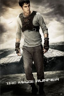 The Maze Runner Poster Large