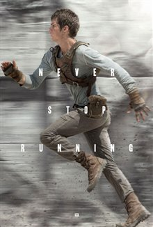 The Maze Runner Photo 17