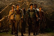 The Maze Runner photo 6 of 20
