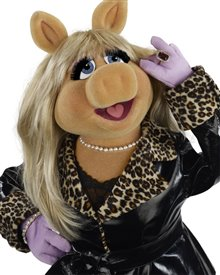 The Muppets Photo 20