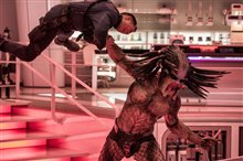 The Predator Photo 1