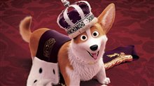 The Queen's Corgi Photo 8