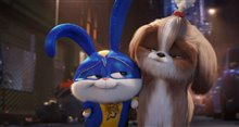 The Secret Life of Pets 2 Photo 10