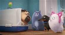 The Secret Life of Pets 2 Photo 14