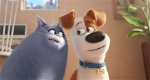 The Secret Life of Pets Photo 2
